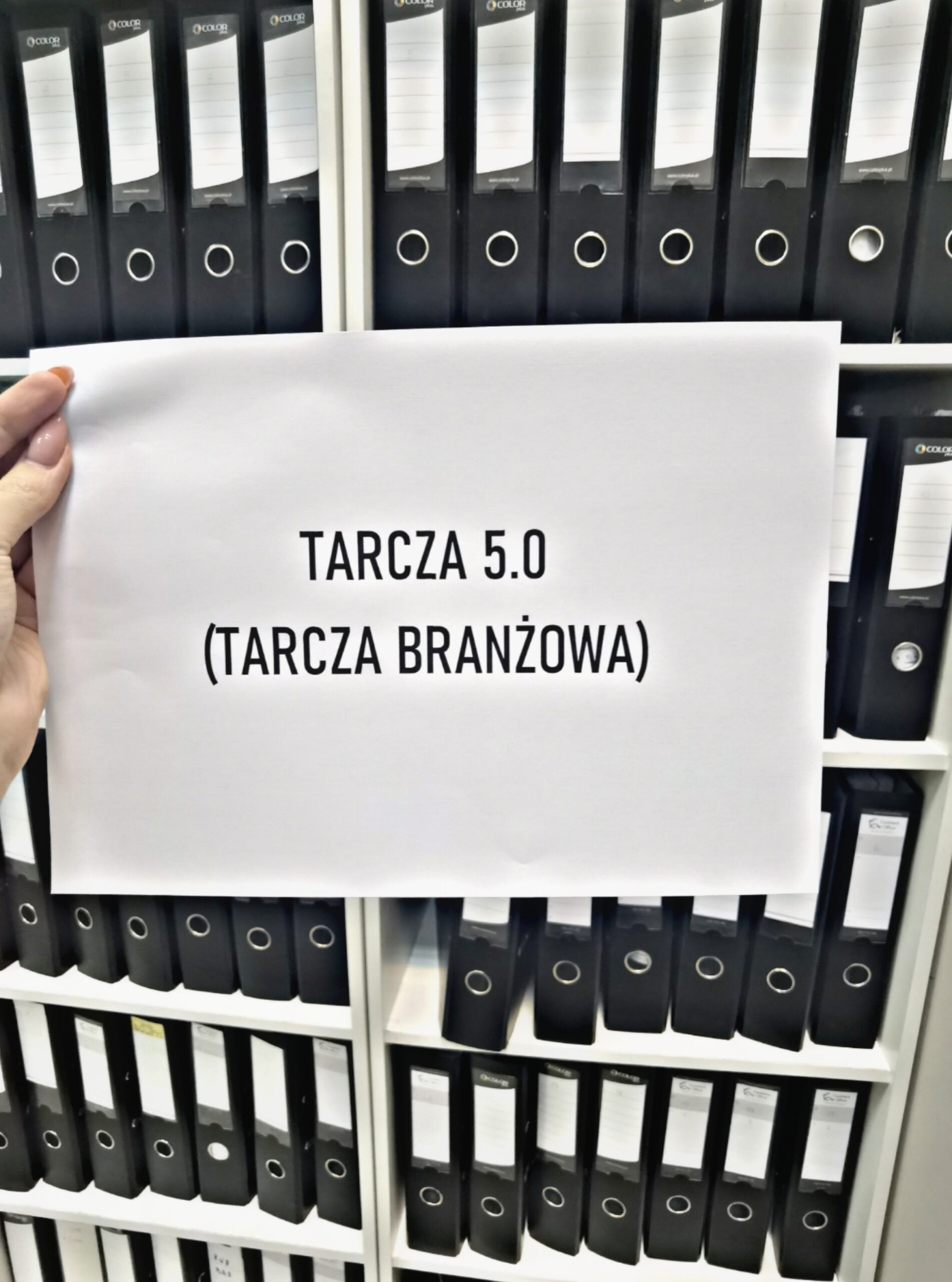 Tarcza 5.0 (tarcza branżowa)